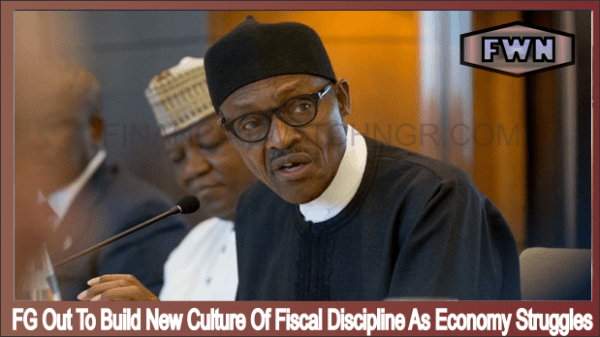 FG Out To Build New Culture Of Fiscal Discipline As Economy Struggles