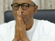 Nigeria Present Woes shows limit of Buhari's Economic Policies