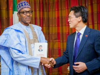 FG To Establish Committee On New ChinaNigeria Projects