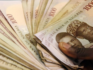 Microfinance operator appeals for more investors to give more loans