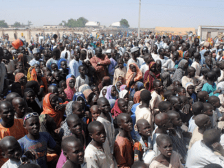 AU commends FG for proper handling of IDPs in North East