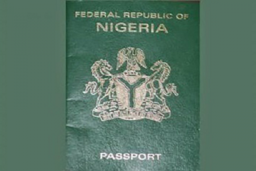 Image result for Criminal Africans Carry Nigeria Passports Says Ambassador