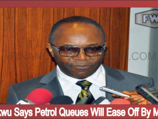 Kachikwu Says Petrol Queues Will Ease Off By Monday