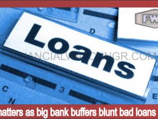 Size matters as big bank buffers blunt bad loans surge