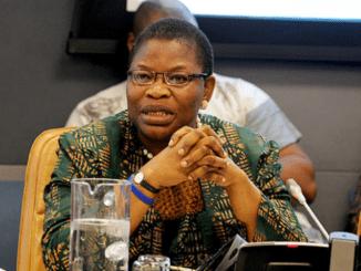Ezekwesili Faults Buharimonics, Says It's 'archaic'