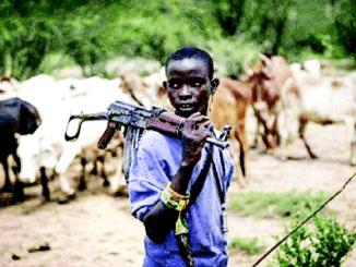 Herdsmen in court over Benue anti-grazing law
