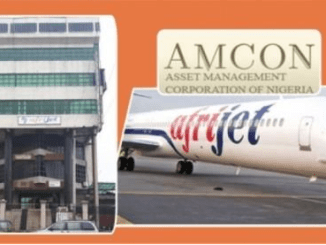 Stella Oduah loses assets to AMCON Over over Unpaid Debt