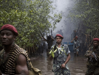 Militants launch fresh attacks on pipelines in Bayelsa