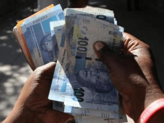 South Africa's rand halts rally