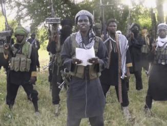 1050 Boko Haram insurgents surrender