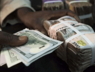 CBN's interventions to keep naira stable in 2018