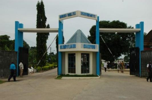 Bayelsa State University