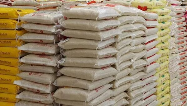 Nigeria to pump N10.7bn into rice production