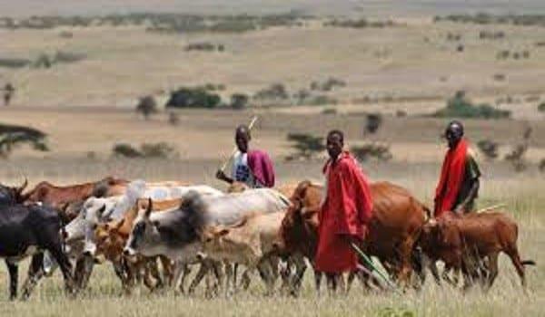 stop fulani herdsmen from invading