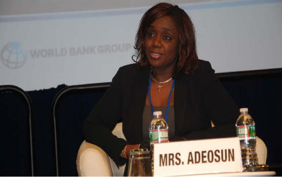 NGO demands explanation from Adeosun on $5.5bn foreign loan