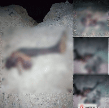 Scattered Body Parts Of Suicide Bombers Who Struck In Maiduguri. Graphic Photos