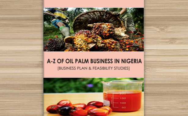 A-Z of oil palm business in Nigeria – [Business plan & Feasibility studies]