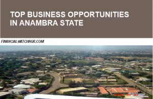 10 viable businesses you can do in Anambra State