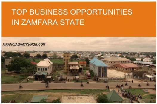 BUSINESS OPPORTUNITIES IN ZAMFARA STATE