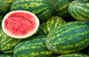 Quick guide to Start Watermelon Farming in Nigeria in 2018