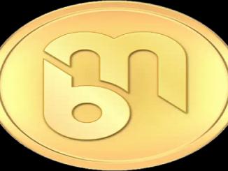beepmagnet coin