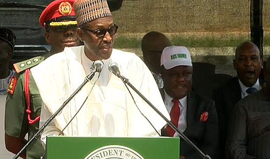 Buhari Commissions Rice Seed Seedling Facility in Cross Rivers State