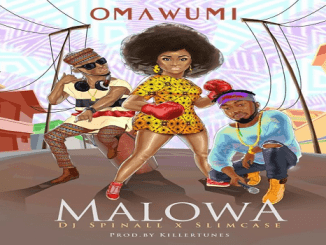 Omawumi Malowa Ft Slimcase DJ Spinall