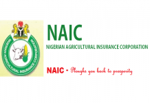 naic recruitment application registration portal www naic gov ng