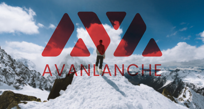 Avalanche Price Surges to Multi Month High 1