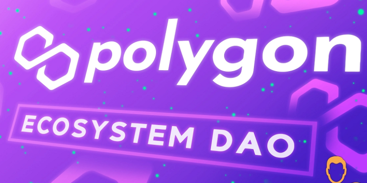 DAO Features for Polygon MATIC is almost ready